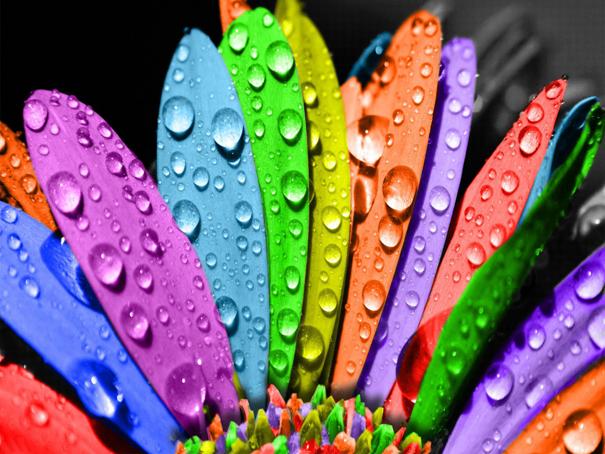 Kurumsal Kimlik Tasarımında Renkler Anlam Taşıyor