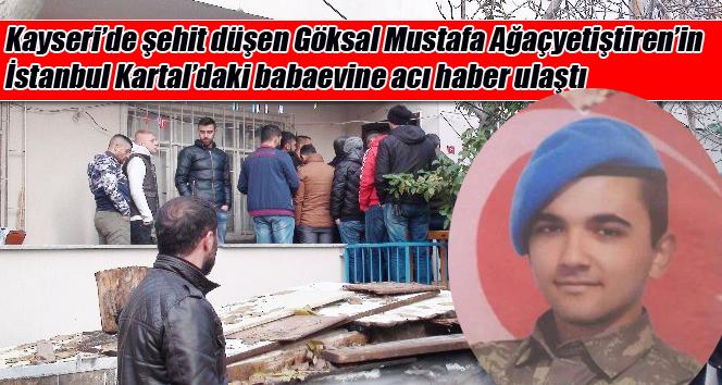 Kayseri'de şehit düşen Göksal Mustafa Ağaçyetiştiren'in İstanbul Kartal'daki babaevine acı haber ulaştı