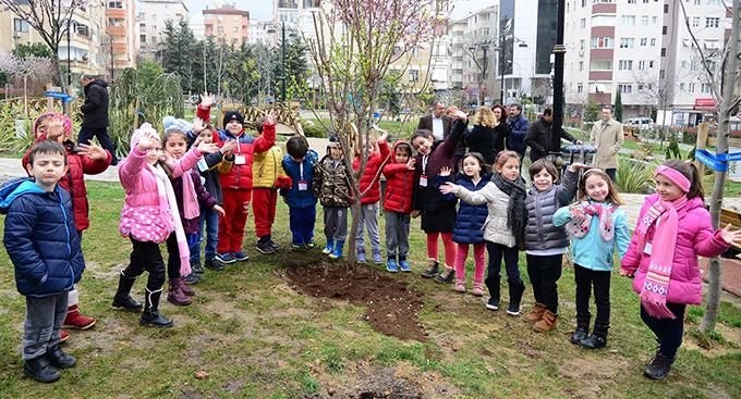 Koşuyolu Parkında yıkılan ağaçların yerine yenileri dikiliyor