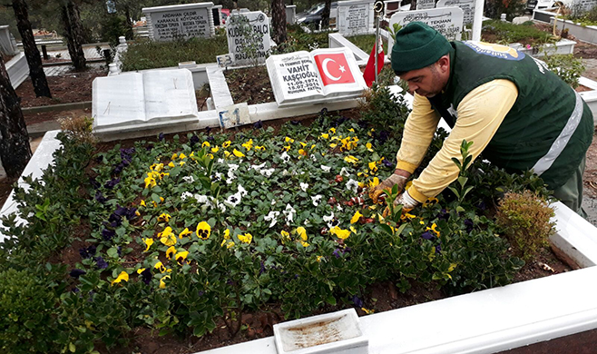 Sultanbeyli Belediyesi, şehitlerin kabirlerine mevsimlik çiçek dikimi yaptı
