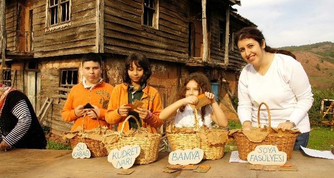 'Şile Tohum ve Yerel Ürünler Şenliği' 19 Kasım'da başlıyor