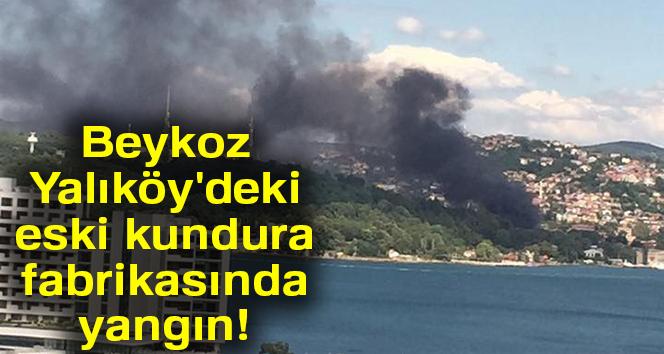 Beykoz Yalıköy'deki eski kundura fabrikasında yangın!