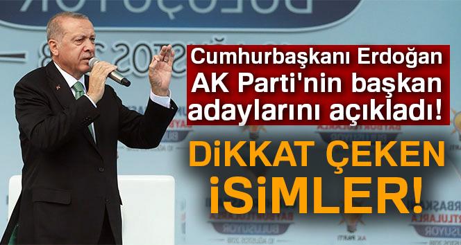 Cumhurbaşkanı Erdoğan, AK Parti'nin başkan adaylarını açıkladı