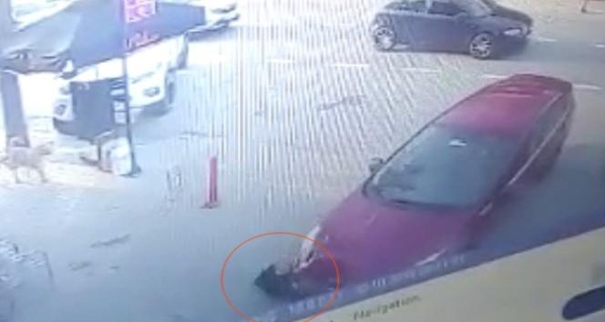 Otomobil altında kalan köpeği sokak köpekleri kurtardı