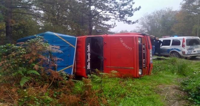 Virajı alamayan kamyonet ormanlık alana yan yattı