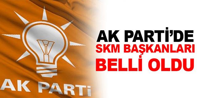 İstanbul ilçe SKM başkanları belli oldu